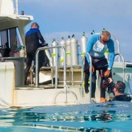 Bonaire Scuba Boat Paul Stockmann SQUARE